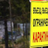 В правительстве Ростовской области опровергли информацию о карантине для приезжих