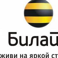 Ветераны юга России смогут бесплатно поздравить близких с Днем победы в офисах