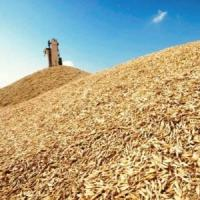 Мошенничество с зерном