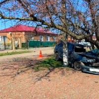 В Кущёвском районе проводится проверка по факту дорожной аварии