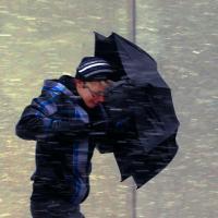 Кубанские синоптики обещают гололёд, метель и туман