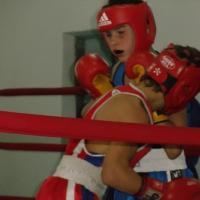 Кущевские боксеры пробились в финал спартакиады молодежи Кубани