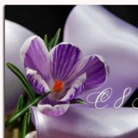 Как появился женский праздник   8 марта