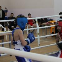 Бокс в Кущевской