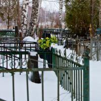 Суицид на кладбище